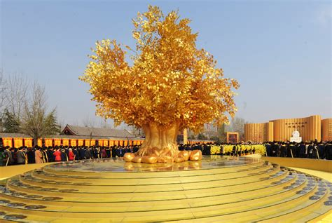 gold tree golden tree picture