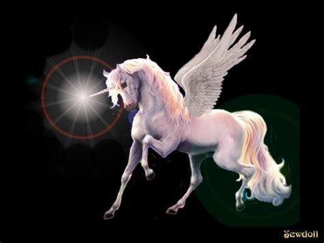 imagenes de unicornios y hadas reales unicornio