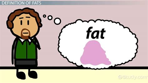 function of healthy fats what are fats functions molecular structure