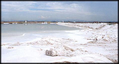 Mata Ponds la sal comun mata la sal marina cura enterate porque