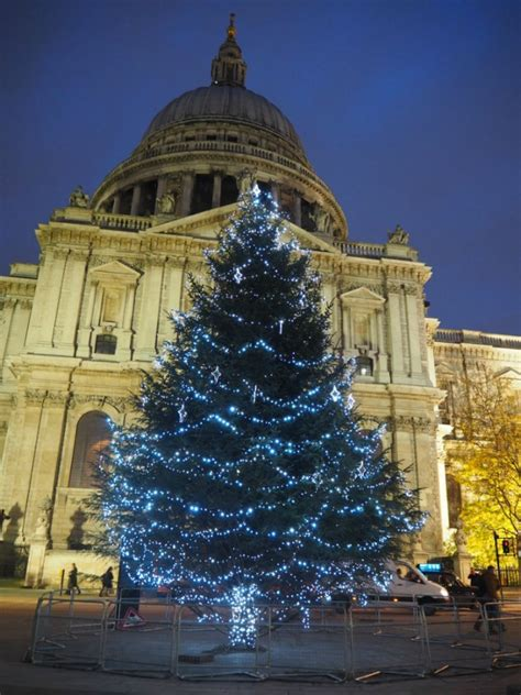 8 christmas trees across london guide london