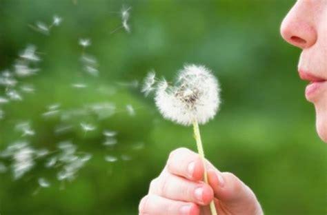alimenti creano gonfiore rinite allergica alimenti da evitare e rimedi naturali