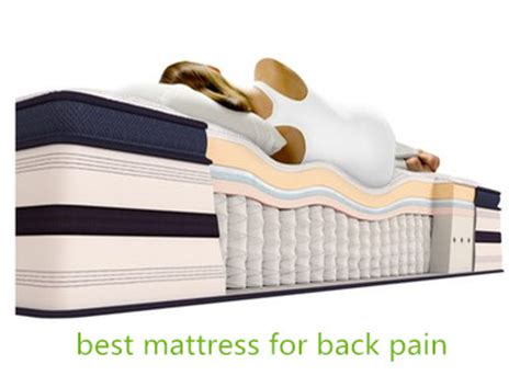 Best Mattress For Back Overview Best Mattresses For Back