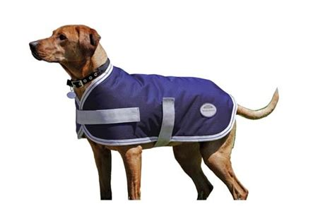Light Windbreaker by Weatherbeeta Rainstop Windbreaker Landa Lite Dog Coat