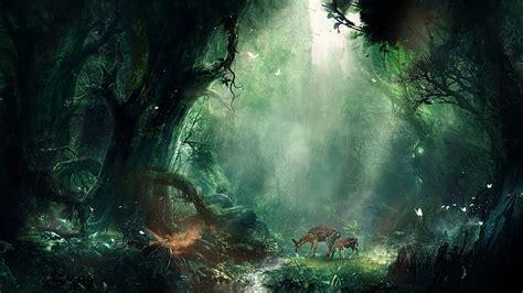 2048x1152 amazing beautiful places 2048x1152 resolution hd 2048x1152 bambi jungle 2048x1152 resolution hd 4k