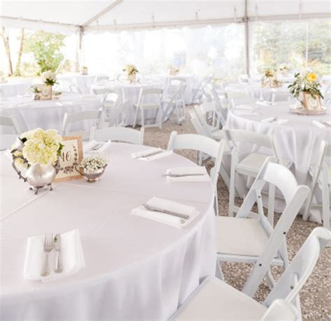 Wedding Chair Rental by 73 Cheap Chair Rentals For Weddings China Cheap