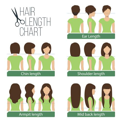 what is the best lenght of hair for a saggin jawline women s hair lengths explained headcurve