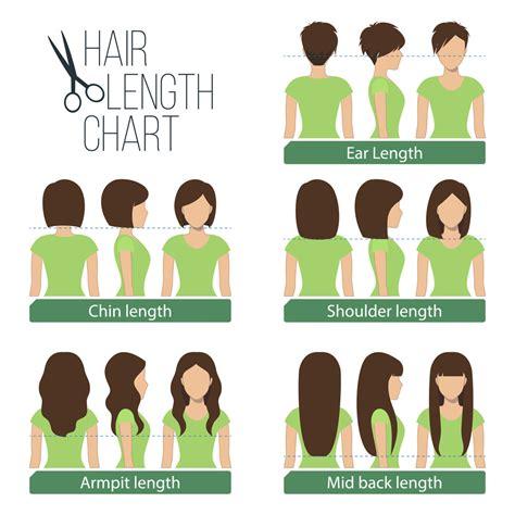 hair length chart women s hair lengths explained headcurve