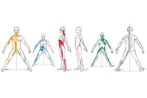 cadenas musculares de gds cadenas musculares y articulares gds j 233 ssica moll