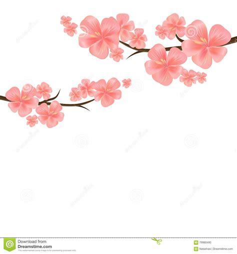 design flower branch cherry blossom flower design www pixshark com images
