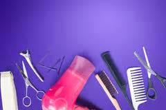Sr Comb Purple purple comb stock image image 20769141