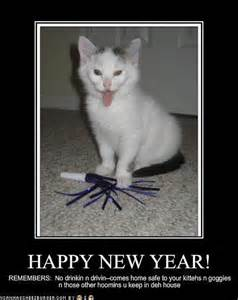 a few new year lolcats the skinny on my jeans genes