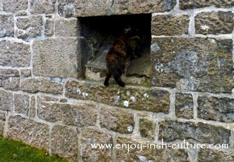 Cing Toilet Belgie by Castles Of Ireland How To Build A Medieval Castle