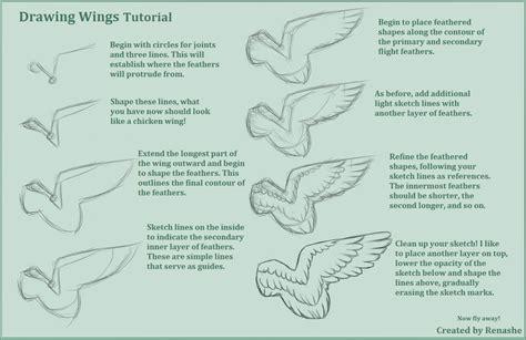 tutorial of c drawing feathered wings tutorial weasyl