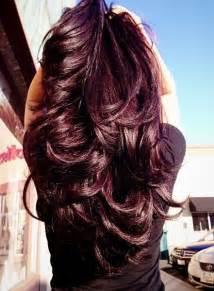 violet burgundy hair color violet brown hair on violet hair