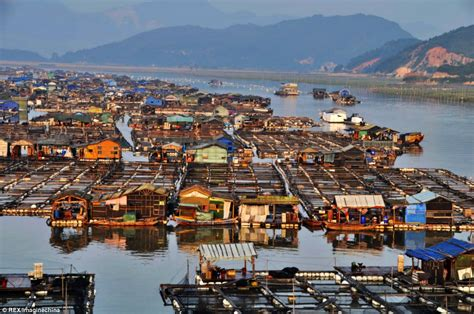 on city boat china s tanka boat people s floating homes daily mail online