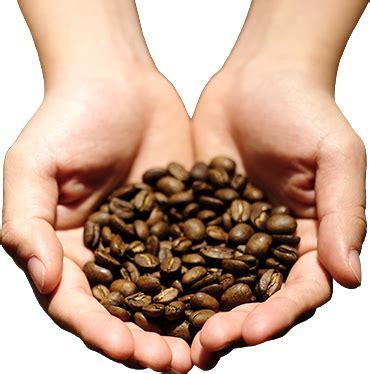 Kabinet Coffee kabinet coffee co kopi kami kopi indonesia