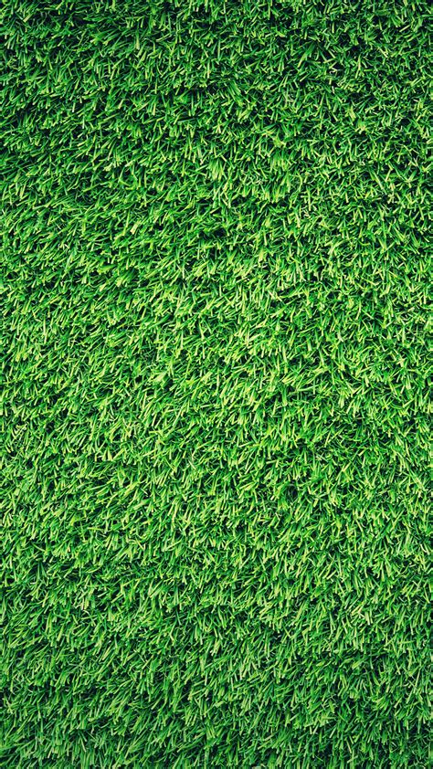 iphone wallpaper green grass for iphone x iphonexpapers
