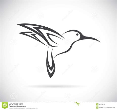 vector image of an hummingbird design stock vector image