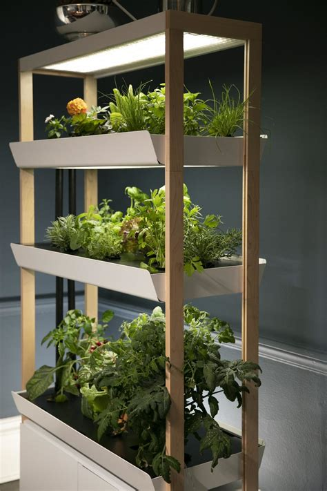 indoor gardening startup rise gardens raises  seed