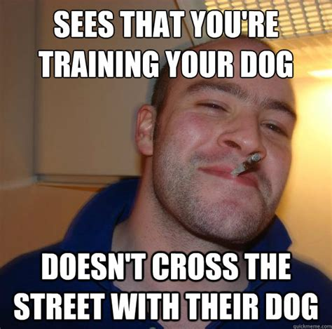 T Dog Memes - sees that you re training your dog doesn t cross the