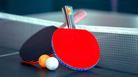 of table tennis table tennis an independent progressive boarding high