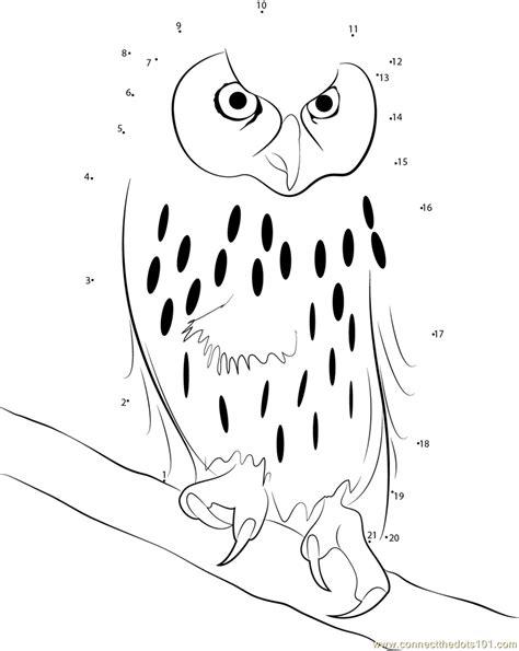 owl dot to dot printable laughing owl dot to dot printable worksheet connect the dots