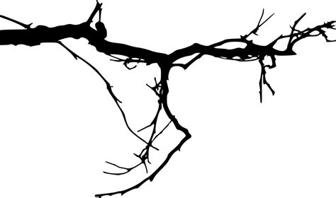 tree tattoo png 15 simple tree branch silhouettes png transparent