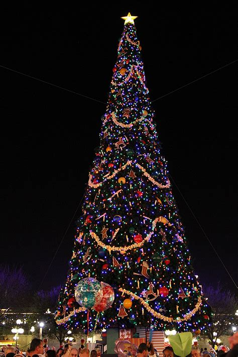 holidays decorations and christmas tree at the magic