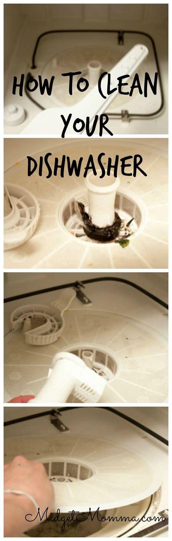 20 best kitchen cleaning tips clean dishwasher cleaning 25 best ideas about dishwasher cleaning tips on pinterest