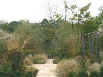 small backyard troline troline small backyard 28 images shelley hugh jones