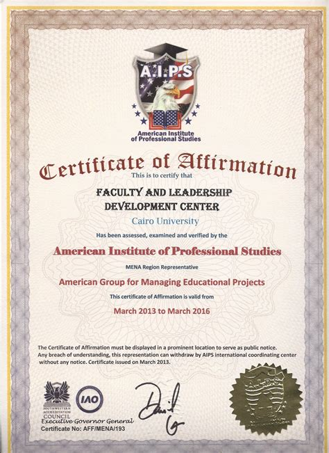 Mini Mba Certificate Programs by مركز تنمية قدرات أعضاء هيئة التدريس والقيادات جامعة القاهرة