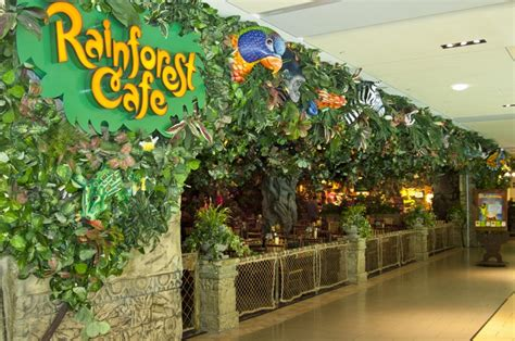 Home Decor Stores In Nashville Tn by 17 Best Images About The Rainforest Cafe On Pinterest