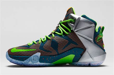 Lebron Shoes For 80 Dollars Provincial Archives Of