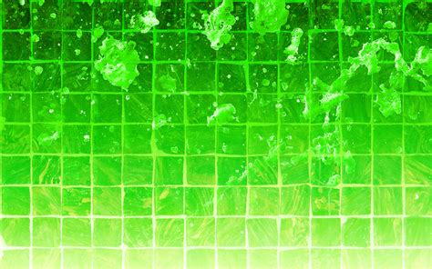 green wallpaper  cool funny