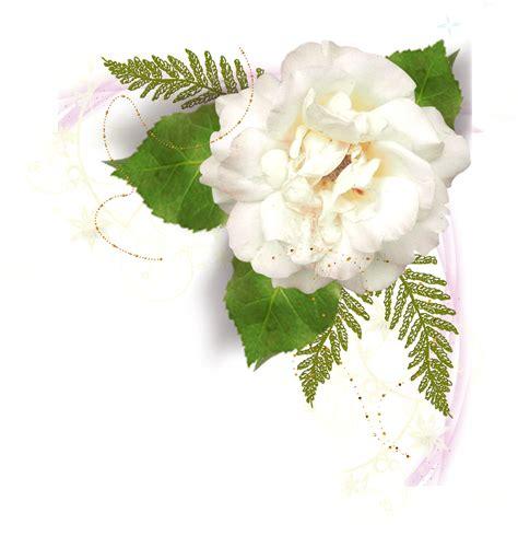 imagenes de flores para difuntos 174 colecci 243 n de gifs 174 marcos esquineros para fotos de flores