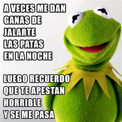 im 225 genes de memes frases para im 225 genes memes de la rana rene graciosos imagenes de amor muy
