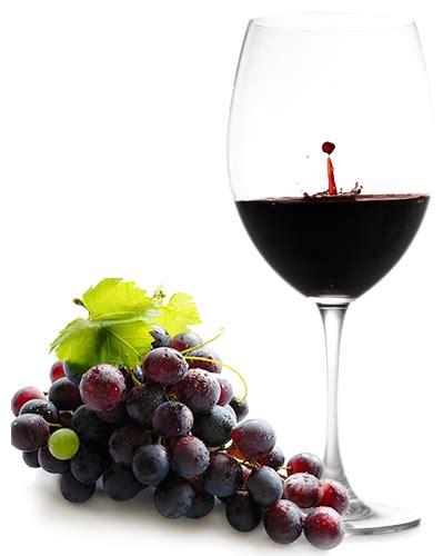 bicchieri vino rosso bicchiere vino rosso societ 224 ciclistica trinit 224 asd