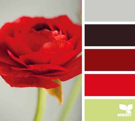 color combination with red best 25 red color schemes ideas on pinterest red color