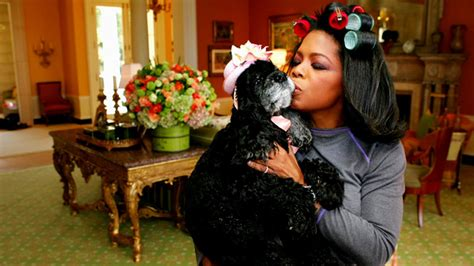 oprah s dogs the most amazing dogs on the oprah show