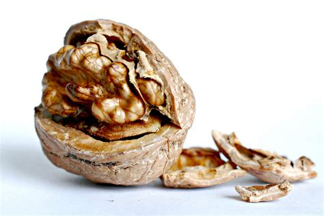 Makanan Untuk Otak 7 makanan hebat untuk otak anda cerdas