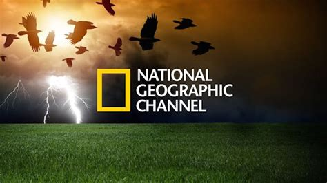 Raglan Natgeo Inindo National Geographic le replay de national geographic arrive sur freebox
