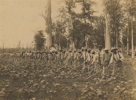 Mississippi Records Free File Parchman Prison Convict Labor 1911 Jpeg Wikimedia