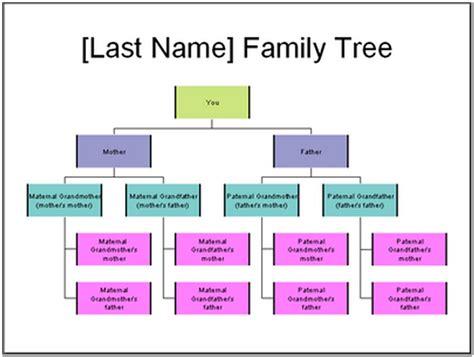 printable and editable family tree fillable family tree template family tree template 50