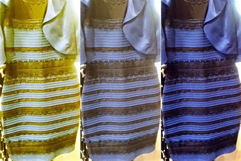 color of the dress current biology tackles quot the dress quot