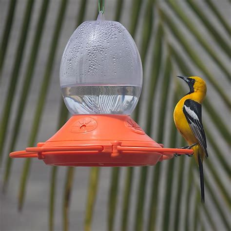 perky pet 174 oriole feeder model 449 2 birdfeeders com