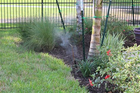 backyard mosquito mosquito solutions backyard 28 images solutions to