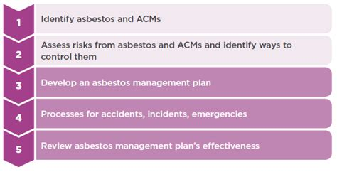 Management And Removal Of Asbestos Worksafe Asbestos Abatement Plan Template