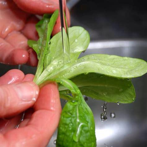 Geschirr Spülen by Pixwords Das Bild Mit Waschen H 195 164 Nde Salat Wasser