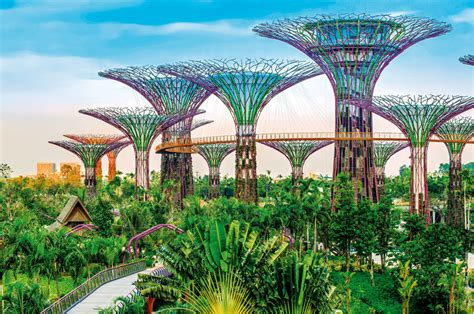 things to do in botanic gardens singapore 35 things to do in singapore guide to cool